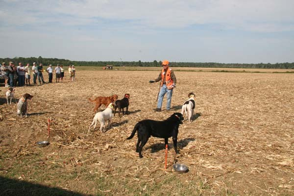 Tree Farm Tour 2010_1