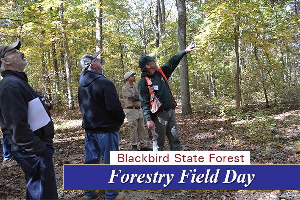Field Day 4