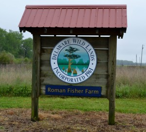 Roman Fisher Farm